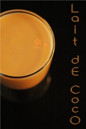Smoothie_melon_lait_de_coco_lait_ferment__citron_vert_2