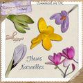 Cu fleurs naturelles (soval)
