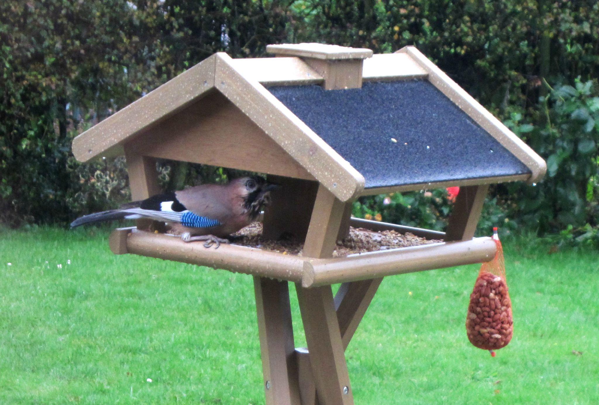 une maison tip top pour les oiseaux rien que du bonheur. Black Bedroom Furniture Sets. Home Design Ideas