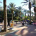 Audubon Park et Zoo (32)