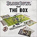 Bloodbowl - ma déception