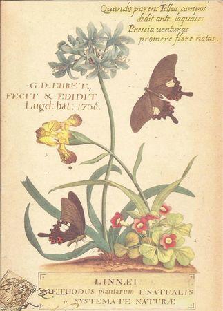 carte postale recette (94)