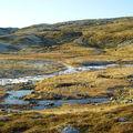 17-10-08 Sortie Montagne et rennes (053)