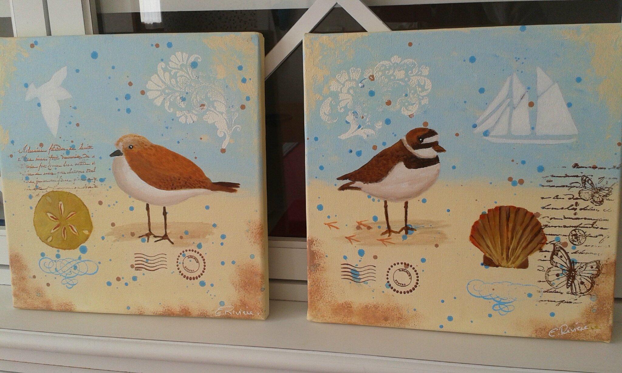 Oiseaux de mer (1)