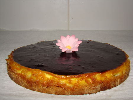 cheesecake_coquelicot_mures_064