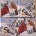 Winter birds ceramic coasters set