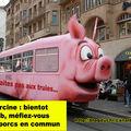 Grève des trans-porcs