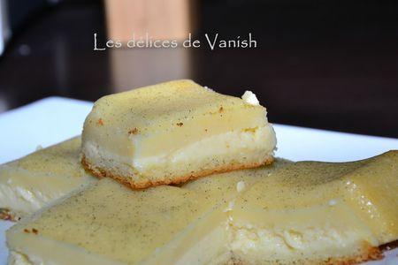 gateau vanille-3 textures-moule tablette