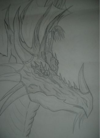 Dragon_16