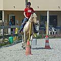 Jeux équestres manchots 2013 (232)