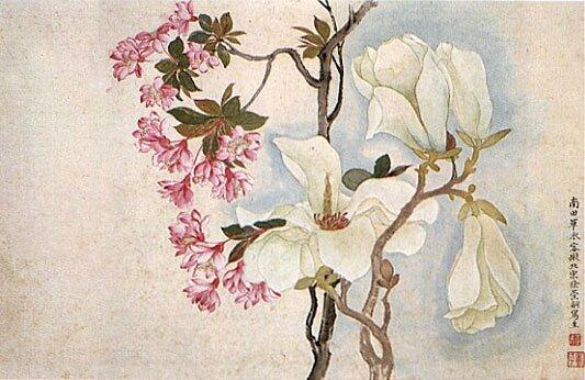 Yun_Shouping,_Magnolias