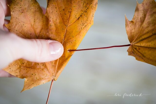 how-to-make-a-crown-of-leaves-by-Lori-Frederick-6