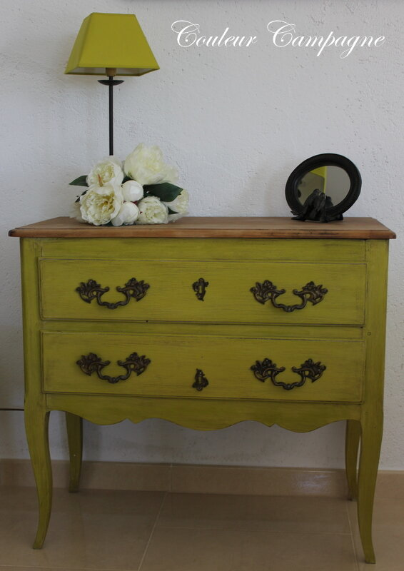 commode ou sauteuse patin e vert ancien couleur campagne. Black Bedroom Furniture Sets. Home Design Ideas