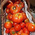 Sauce tomates légère comme pour les enfants !