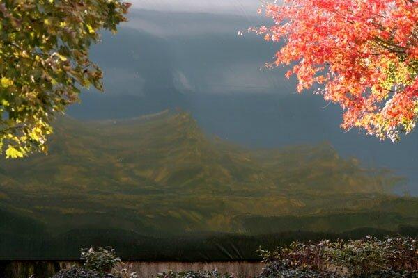 paysage-c