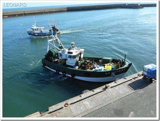 Le Guilvinec-Retour de pêche