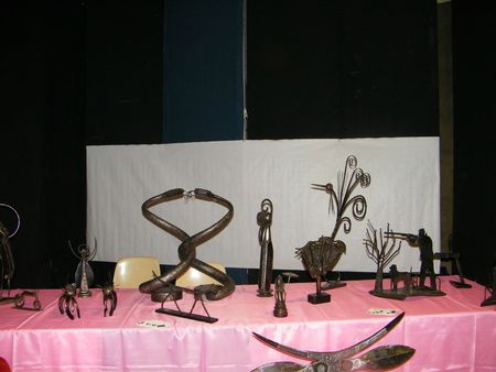 expo chaussin 2012 033