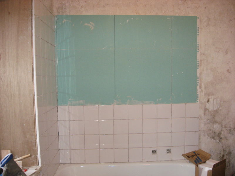Une pi ce typique de la maison la salle de dans l for Peinture pour piece humide
