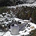 Le jardin sous la neige côté marais poitevin