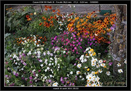 2011_08_16_Les_fleurs_de_jardin_de_Cyril__7_