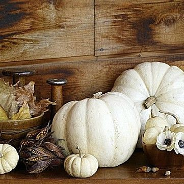 White-Pumpkin-Wedding-Decor