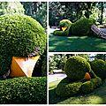 Le jardin des plantes, été 2015