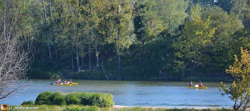 Reflet-de-Loire-en-automne-6