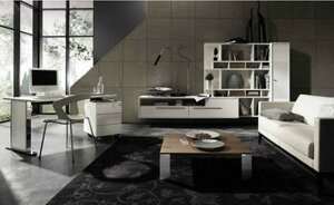 2010-Living-Room-Wall-Combination-Office-Furniture-Design-Ideas-From-Huelsta-550x337