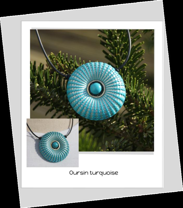 oursin bleu turquoise