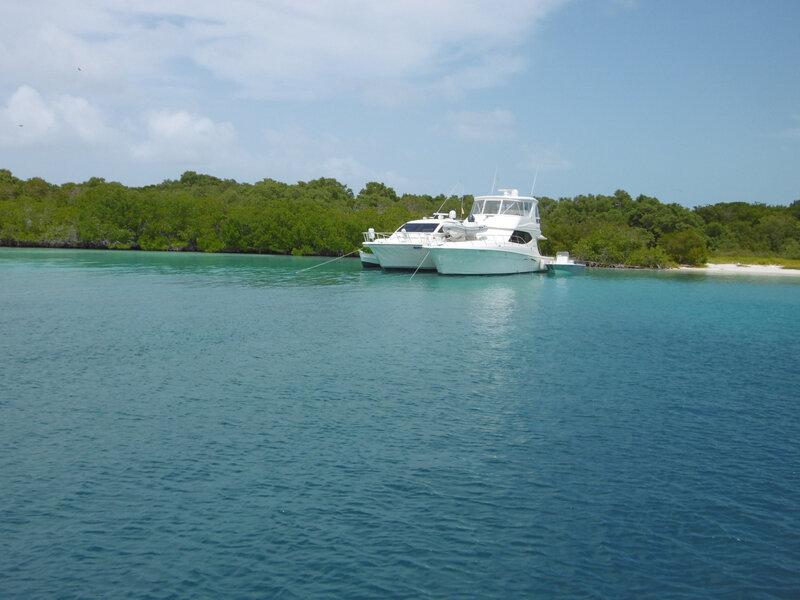 Isla Félipe o Brujusqui (26)
