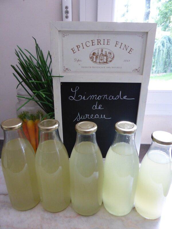 6-limonade de fleurs de sureau (7)