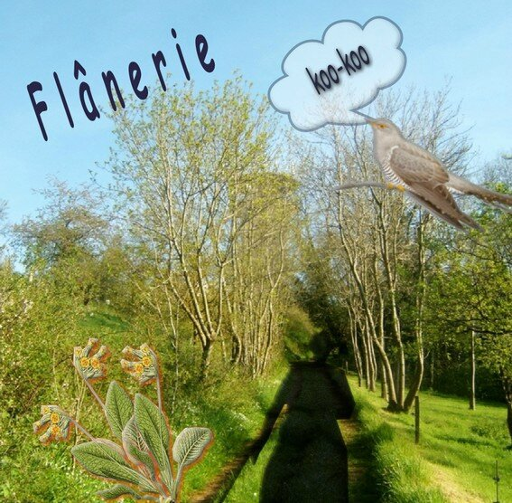 flanerie