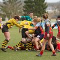 66IMG_0308T