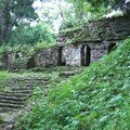 Yaxchilan - Temple Midway of Grand Staircase