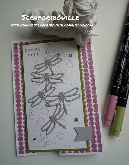 Envolée libellules -1