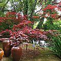 Jardin Poterie Hillen 12061663
