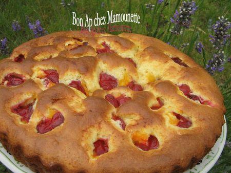 Gâteau aux prunes rougeâtres sauvages de juillet 007