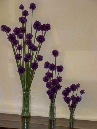 Bouquets_fleurs_d_ail__fleurs_champ_tres_012
