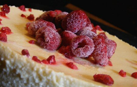 Cheesecake_nature_012