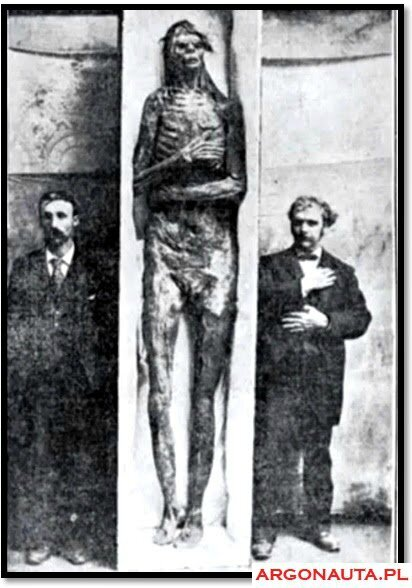 giant-skeleton-unknown