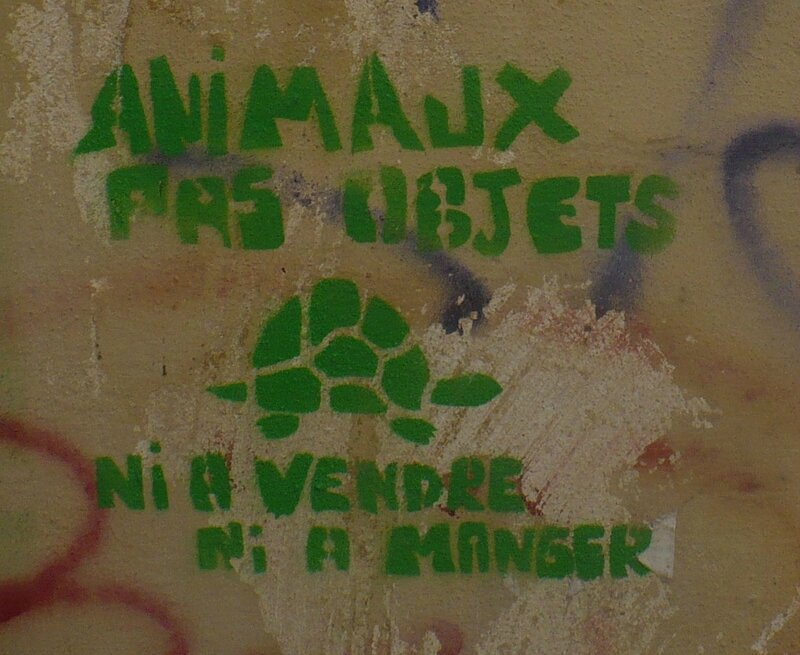 Graffiti animaux