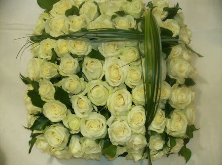 zroses_blanches_deuil_1
