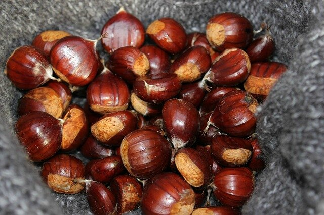 chestnuts-218781_640