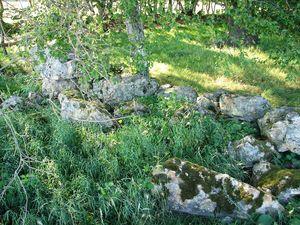 Saint_Martin_du_Lac_dolmen_du_bois_de_Glenne_6