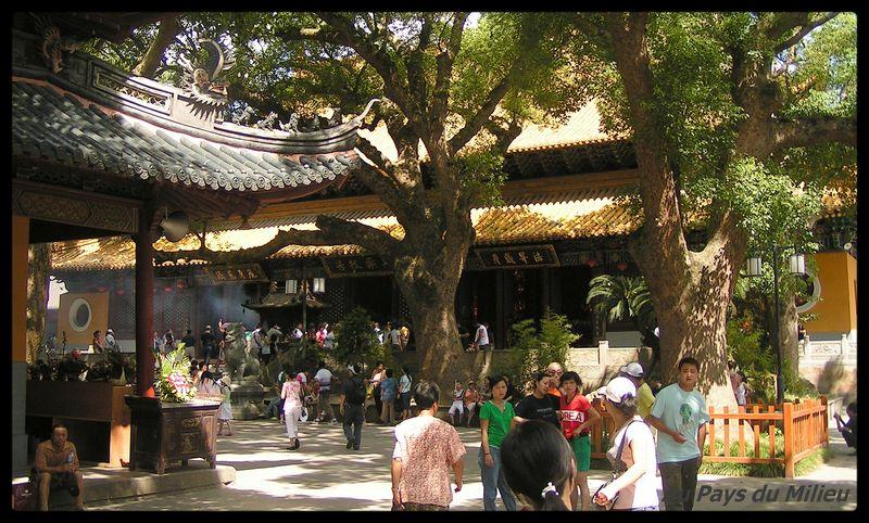 Ile Putuo Shan dans la cour ombragée d'un temple