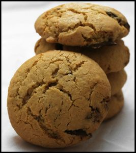 cookies au pralin et 2 chocolats (1)