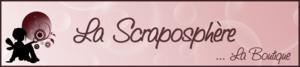 SCRAPO_900