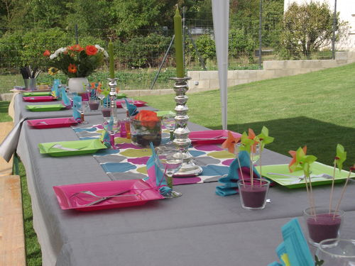 la table photo de h d co cr maill re 2010 vert anis