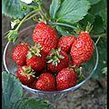 C'est jeudi c'est masterchef...magret et fraises marinés