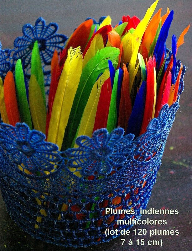 plumes indiennes 1a